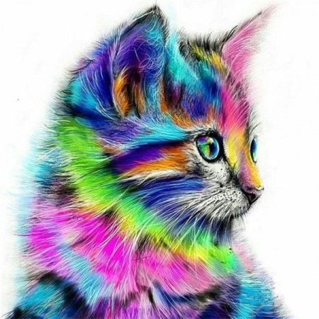 Paint By Numbers - Colorful cat (1) 40x50cm