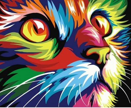 Paint by numbers - Colorful Cat 40x50cm