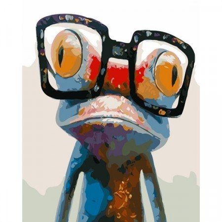 Paint by numbers - Funny frog 40x50cm